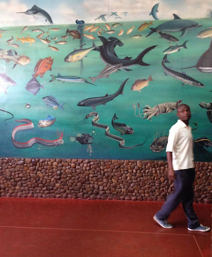 Maputo Natural History