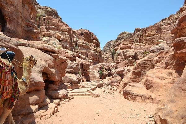 monastery stairs petra