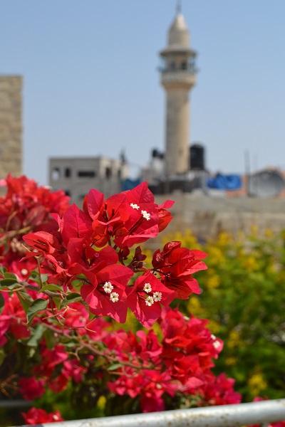 Ramallah Palestine