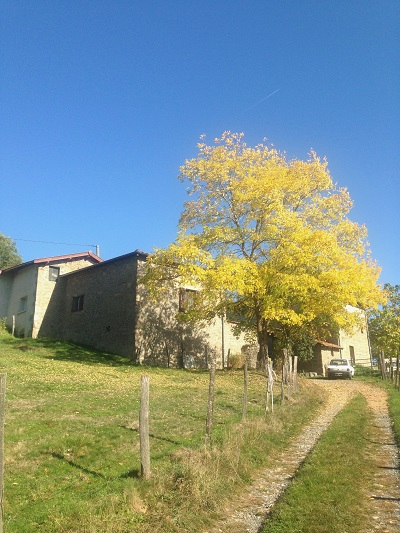 autumn in france