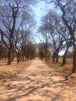 Solusi University Bulawayo