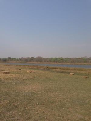 Game Park Lake Harare Zimbabwe