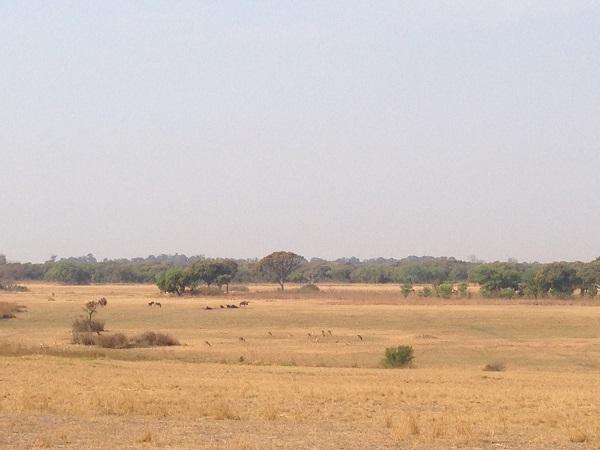 Haka Game Park Zimbabwe