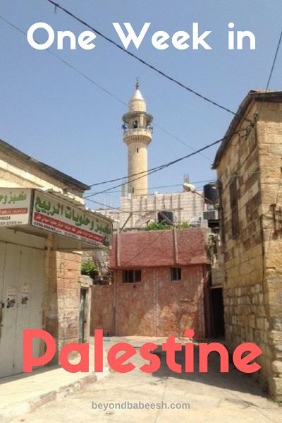 One week travel in Palestine west bank
