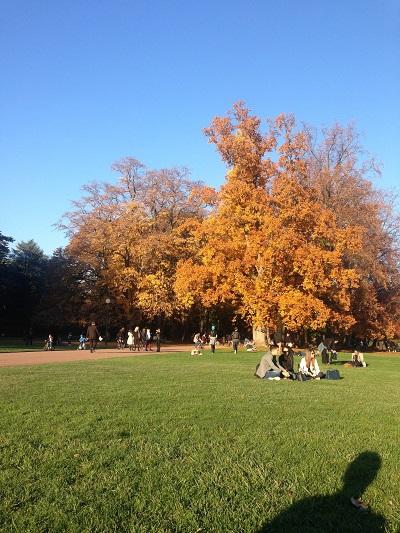 autumn in Lyon