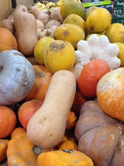 squash autumn in France