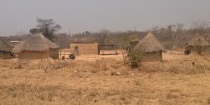 zambian countryside