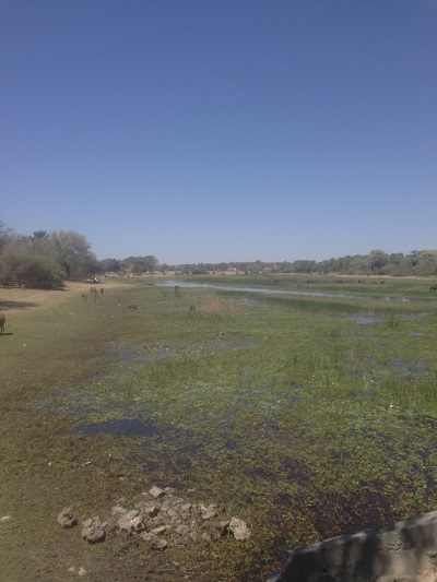 okavango delta maun botswana