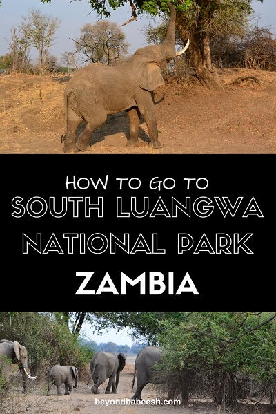 south luangwa national park from lusaka1