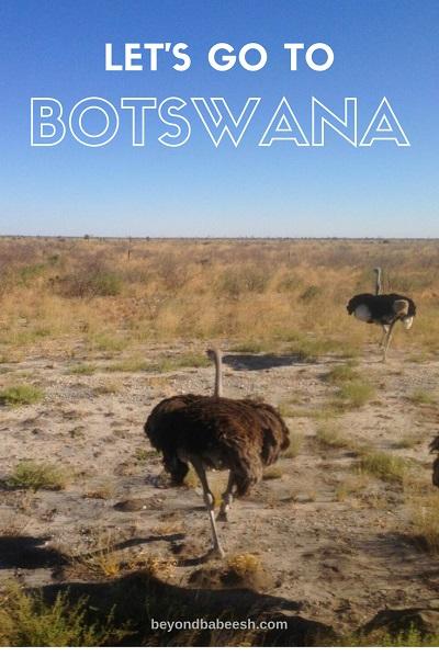 traveltobotswana1