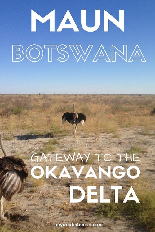 things to do in maun botswana1