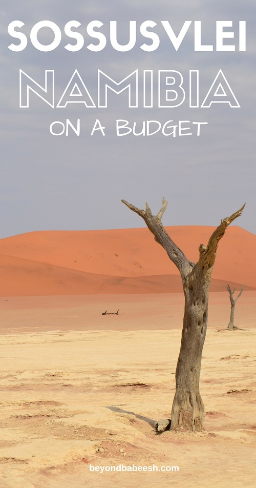 see sossusvlei independently and on a budget1