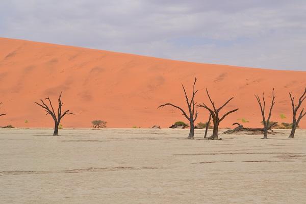 gorgeous deadvlei in sossusvlei Namibia