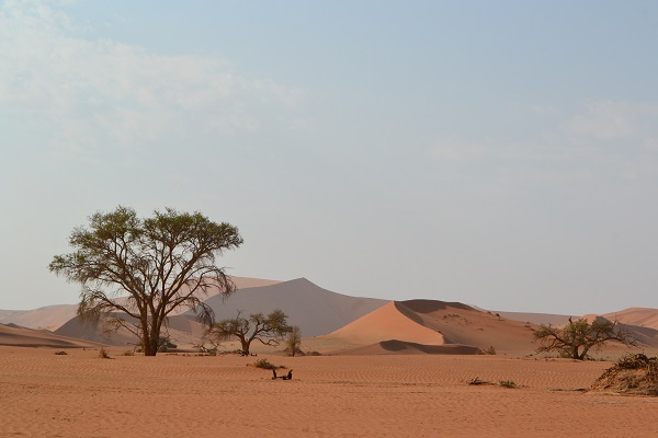 See sossusvlei Independently