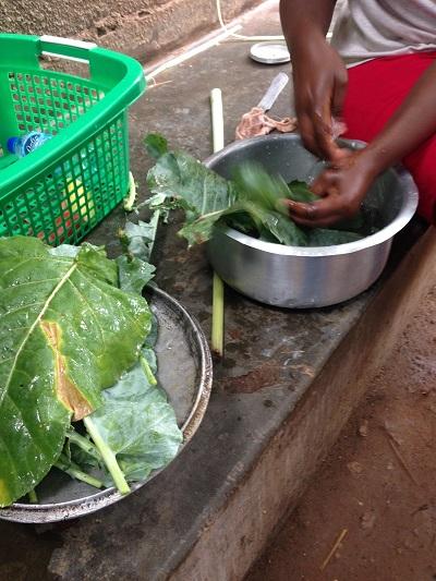 washing greens in uganda