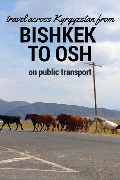 Traveling Across Kyrgyzstan from Bishkek to Osh with Public