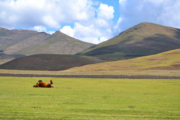 Just some photos of gorgeous, green Lesotho: The Kingdom in the Sky